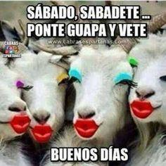 Buenos Dias http://enviarpostales.net/imagenes/buenos-dias-1540/ #buenos #dias #saludos #mensajes