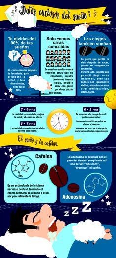 Te compartimos esta interesante infografía sobre datos curiosos del sueño que probablemente desconocías.