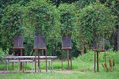 Garden by Tage Andersen