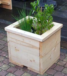 Plantenbak 40 x 40 cm