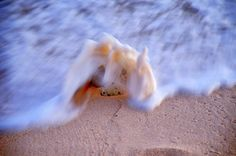 Surf at South Sound by Marvin Hurlston - Landscapes Beaches ( sand, beaches, sunset, cayman, surf )