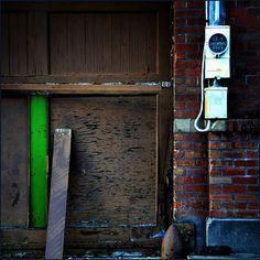 jody9   a green discovery, via Flickr.