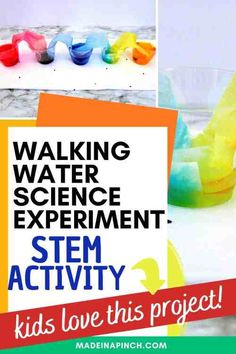 Fun & Easy Rainbow Walking Water Experiment Stem Projects For Kids, Science Projects For Kids, Science For Kids, Kids Crafts, Science Activities, Activities For Kids, Preschool Science, Science Ideas, Educational Activities