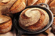 Sauerteige aus verschiedenen Mehlsorten und Mehltypen haben unterschiedliche Eigenschaften bei der Trieb- und Geschmacksbildung. Es macht durchaus Sinn diese in einem Brot zu vereinen. Neben der ge...