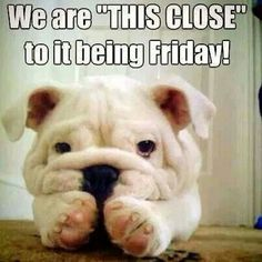 So cute and soooo close to Friday!