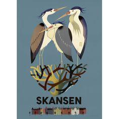 Hägrarna på Skansen / Vykort42