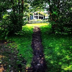 Hiding in the #shadows on a hot #summer day. #landscape #green #lush #vibrant #photography #home