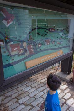 Игра игровые автоматы с мягкими игрушками