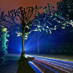 HANNOVER Herrenhäuser Gärten Hanover, Royal gardens germany Lichtinstallation im Großen Garten. Allemagne