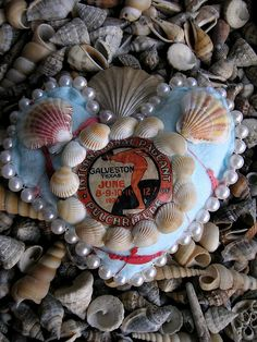 Lisa Kettell... seashell #valentine