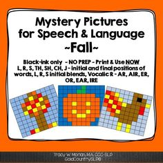 No prep! 23 total phonemes! Black ink ONLY! Use with mixed groups!