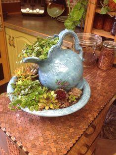 Easy Diy Garden Projects You'll Love Succulent Gardening, Succulent Pots, Cacti And Succulents, Planting Succulents, Container Gardening, Planting Flowers, Organic Gardening, Succulent Ideas, Kitchen Gardening