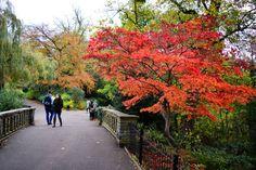 Waterlow Park, Hampstead, London