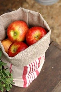 A couple apple trees in front of the cabin would be perfect! And thinks of all the recipes! <3