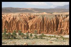 M'chounèche régions de Biskra, Algérie - ALGERIE DECOUVERTE