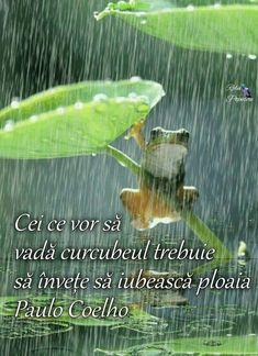 My Life, Spirituality, Humor, Wonderland, Motivational, Rain, God, Beautiful, Happy