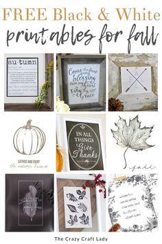 Free Black and White Fall Printables Pumpkin Crafts, Fall Crafts, Dollar Store Crafts, Dollar Stores, Free Black, Black And White, Printable Art, Printables, Fall Home Decor