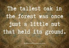 """The tallest oak in the forest was once just a little nut that held its ground.""  ♡ Yeah, Baby ♡"