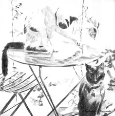 The Creative Cat - Featured Artwork: Coquille Cats