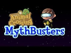 Welcome to Animal Crossing New Leaf Mythbusters! The series where I attempt to prove or disprove various rumours and myths surrounding the game! Leaf Animals, Animal Crossing Guide, Town Names, Snorkel Mask, New Leaf, Mask Making, Snorkeling, Game Design, Nerdy