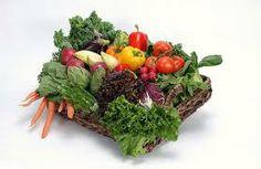 San Antonio Vegetable Gardening Guide and Resource...