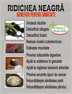 Medicinal Plants, Health Remedies, Good To Know, Food And Drink, Health Fitness, Healthy Recipes, Cancer, Blog, Health And Wellness