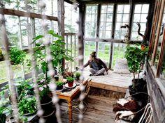 - Glasshuset gjør at vi kan være Conservatory, Plants, Outdoor, Greenhouses, Inspiration, Reflection, Ideas, Decor, Travel