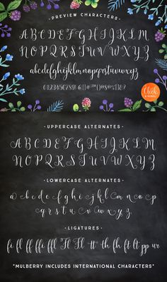 Mulberry Script is a lovely handwritten calligraphy script. Mulberry is whimsical and modern with a lot of character. This typeface comes with pretty flourished alternate letters, ligatures, extras and watercolor art. Mulberry works great for stationery, letterpress, weddings, magazines and marketing.