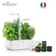 Potager Véritable CLASSIC - Jardin autonome d'intérieur Made in France
