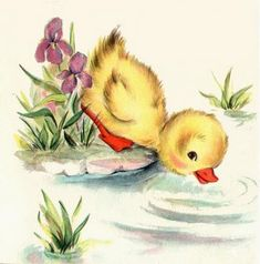 love the little ducky