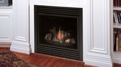 12 Excellent Gas Fireplace Manual Pic Ideas