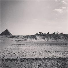 Egypt, Cairo , Pyramids Cairo Pyramids, Egypt