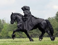 The Friesian Horse is an all-black equine breed that developed in The Netherlands. This horse is one of the only indigenous horses existing in the country and i Pretty Horses, Horse Love, Beautiful Horses, Animals Beautiful, Animals And Pets, Cute Animals, Horse Costumes, Friesian Horse, Andalusian Horse