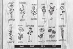 March Birth Flowers, Birth Flower Tattoos, Pregnant Wedding, Drawing Clipart, Flower Svg, Baby Invitations, Nature Illustration, Pattern And Decoration, How To Draw Hands