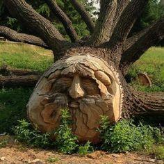 Tree Stump Art | Carved tree stump | Art stuffs