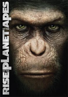 Rise of the Planet of the Apes. This movie breaks my heart and scares me at the same time...amazing movie.