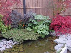 Japanese Garden Display at Coolings - Build a Japanese Garden UK Japanese Garden Plants, Japanese Garden Design, Japanese Gardens, Water Features In The Garden, Garden Ornaments, Pathways, Shrubs, Landscape Design, Display