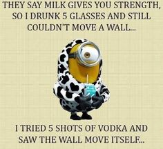 87 Funny Minion Quotes Of The Week And Funny Sayings 2