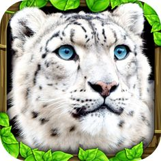 Snow Leopard Simulator apk android Free    http://android4fun.net/snow-leopard-simulator/    #SnowLeopardSimulator#apk #free #android #download #android4fun