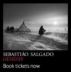Until September 8 at Natural History Museum / an exhibition that showcases the results of an eight-year long project, which saw photo-journalist Sebastião Salgado discover landscapes, wildlife and communities around the world that have been untouched by modern life. There are 200 black-and-white photographs on display, showing tribes still living by ancient values and landscapes that demonstrate the awesomeness of nature