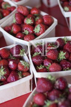 Applecrest Farm Strawberries  ©Dawn Norris Photography, Inc.