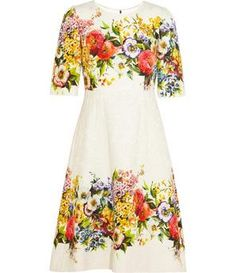 Dolce and Gabbana Floral-brocade dress