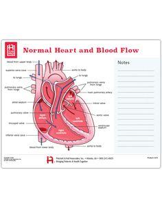 Normal Heart and Blood Flow Tearpad sheets per pad) Mitral Valve Regurgitation, Heart Diagram, Normal Heart, Shopping Cart Software, Cardiology, Flow, Ultrasound, Education, Nursing