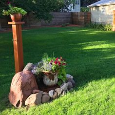 Innovative Image Backyard Grass Landscaping Backyard Grass Landscaping Restore A Weedy Patchy Lawn The Family Handyman Landscaping Retaining Walls, Backyard Landscaping, Backyard Ideas, Garden Ideas, Landscaping Ideas, Screen Design, Lawn Problems, No Grass Backyard, Growing Grass