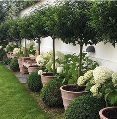 If you are looking for Small Garden Design Ideas, You come to the right place. Below are the Small Garden Design Ideas. This post about Small Garden Design Ideas. Backyard Garden Design, Backyard Fences, Front Yard Landscaping, Fence Garden, Garden Borders, Boxwood Landscaping, Box Garden, Back Garden Ideas, Green Garden