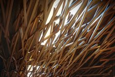 Making of Starbucks Coffee by Kengo Kuma BY Reinaldo Handaya