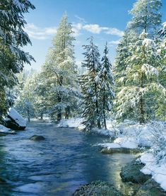 Can't wait till the Truckee River gets a fresh blanket of snow! Hoping for a winter wonderland! To see the best things to do in the snow in the Truckee Tahoe area, visit: http://www.truckee.com/explore/play/Winter+Activities/