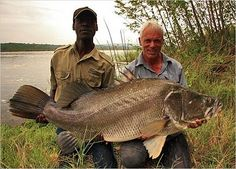 Jeremy Wade with a Nile perch. The Nile perch is considered one of the world's 100 worst invasive species, though Jeremy caught this one in its native habitat. Fishing 101, Fishing Quotes, Fishing Life, Sea Fishing, Gone Fishing, Fishing Humor, Trout Fishing, Saltwater Fishing, Kayak Fishing
