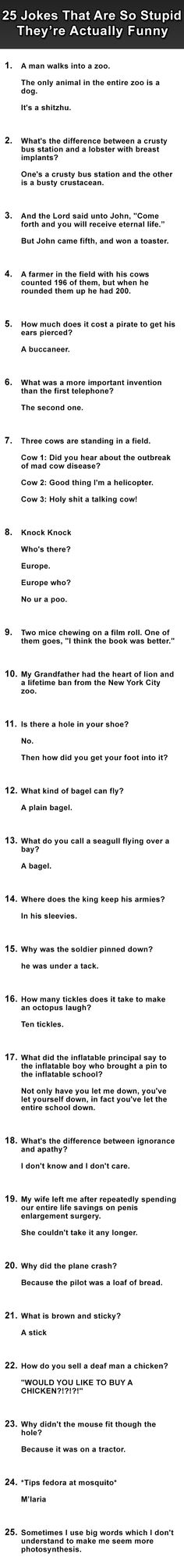 Jokes that are so stupid theyre funny. Number 20 gets me and I don't even understand