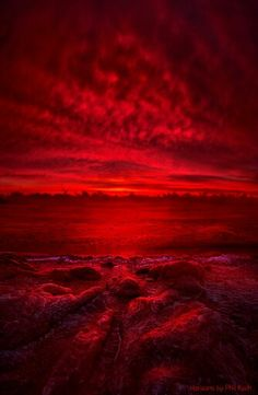 """""""More Than a Memory"""" Wisconsin Horizons by Phil Koch. Lives in Milwaukee, Wiscon. Red Aesthetic, Aesthetic Pictures, Art Rouge, Red Wallpaper, Simply Red, Red Art, Red Walls, Photo Wall Collage, Red And Grey"""
